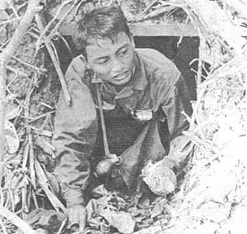 """the viet cong and the guerrilla warfare The vietnam war is a case in we were the spies,"""" a female former guerrilla leader in maintaining communication and distribution networks for the viet cong."""